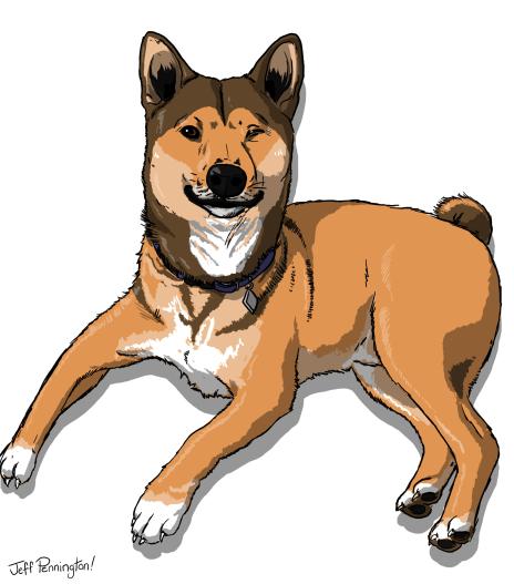 paulgrasso_dog